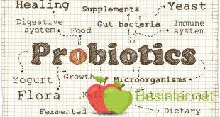 Probiyotik Etki