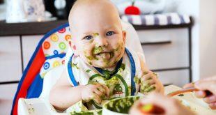 bebek ek gıda blw yöntemi