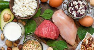 kaliteli protein