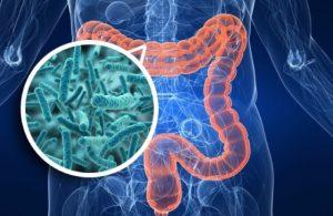 Mikrobiyota nedir ?