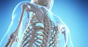 Osteoporozda Beslenme Nasıl Olmalı?