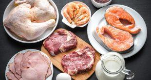 Yüksek Proteinli Diyetler