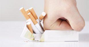 Sigara,Nikotin ve Vücut Kilosu İlişkisi Nedir ?