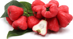 Rose Apple Nedir?