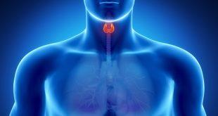 tiroid hastalıklarında beslenme