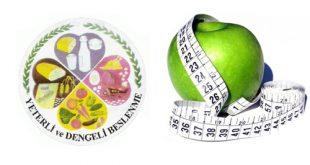 Yeterli ve Dengeli Beslenme : 4 Yapraklı Yonca Modeli Nedir ?