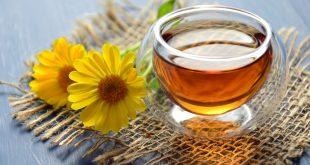 Kombucha Çayı Nedir ?
