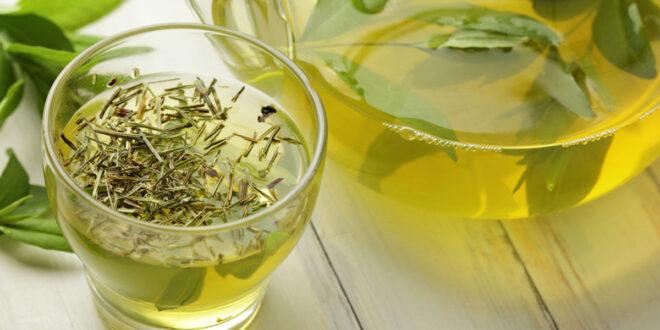 Yeşil Çayın Obezite ile İlişkisi Nedir?