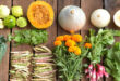 Organik Gıda Kavramı, Temeli ve Bizim için Önemi